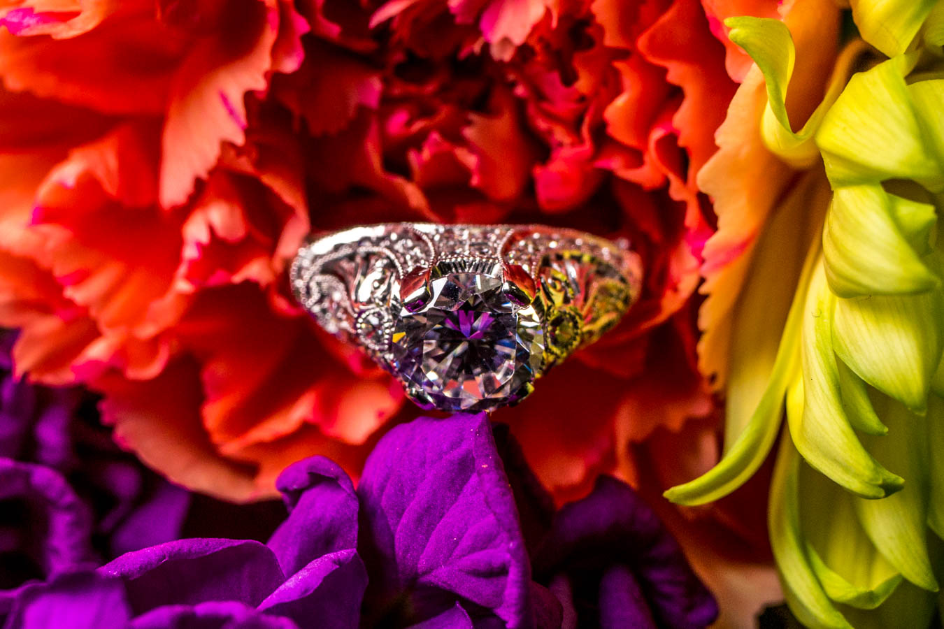The Fabiola Ring / Image: Catherine Viox{ }// Published: 10.8.19