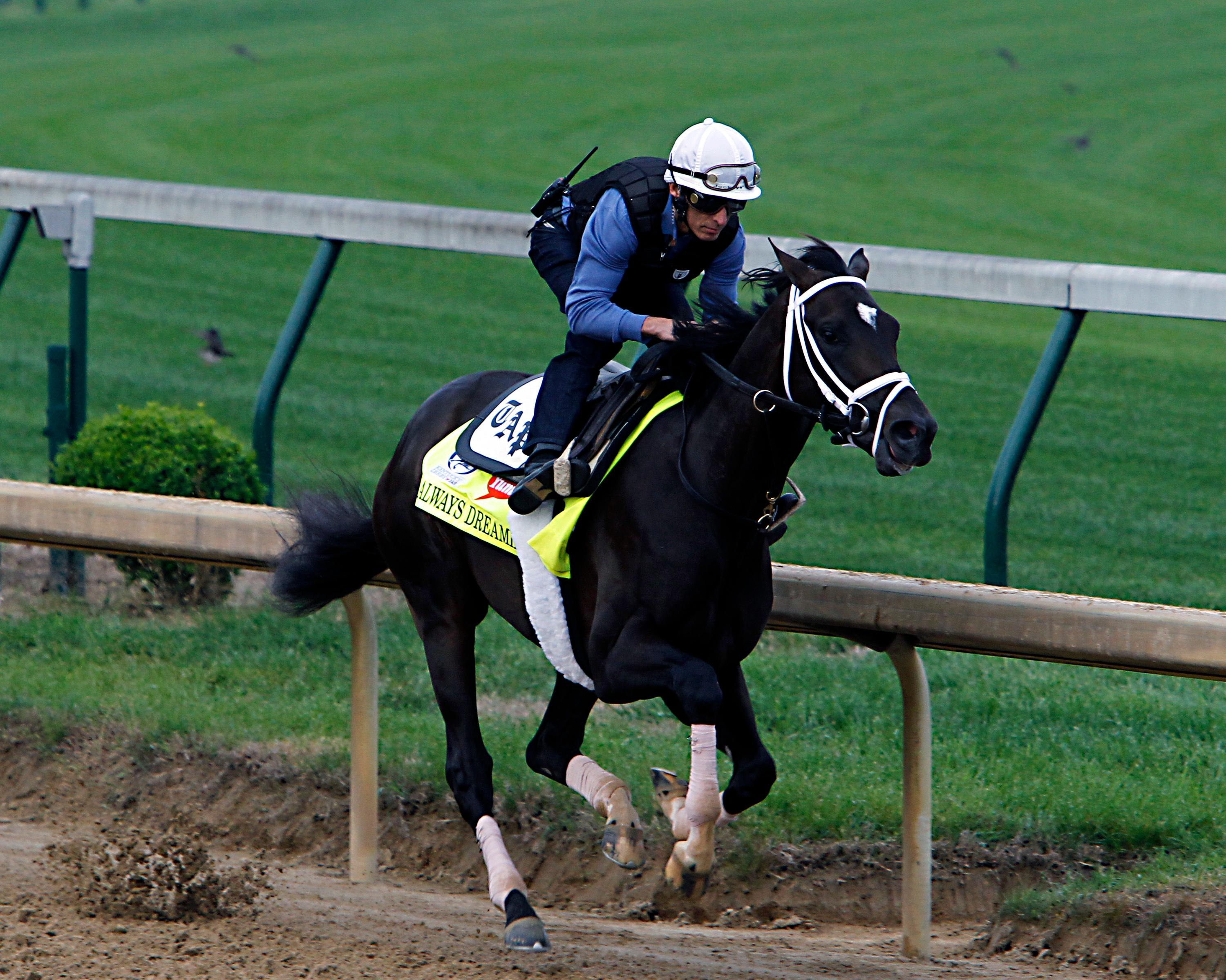 Kentucky Derby hopeful Always Dreaming works out under jockey John Velazquez at Churchill Downs in Louisville, Ky., Friday, April 28, 2017. Always Dreaming is one of five colts eyeing the May 6th horse race from the barn of trainer Todd Pletcher. (AP Photo/Garry Jones)