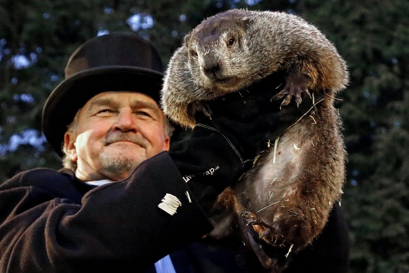<p>In this Feb. 2, 2017, file photo, Groundhog Club handler John Griffiths holds Punxsutawney Phil, the weather prognosticating groundhog, during the 131st celebration of Groundhog Day on Gobbler's Knob in Punxsutawney, Pa. Punxsutawney Phil's handlers are set to announce at sunrise Friday, Feb. 2, 2018, what kind of weather they say the rodent is predicting for the rest of winter. (AP Photo/Gene J. Puskar, File)</p>