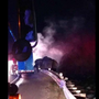 Chattanooga firefighters responding to semi fire find elephants on side of I-24