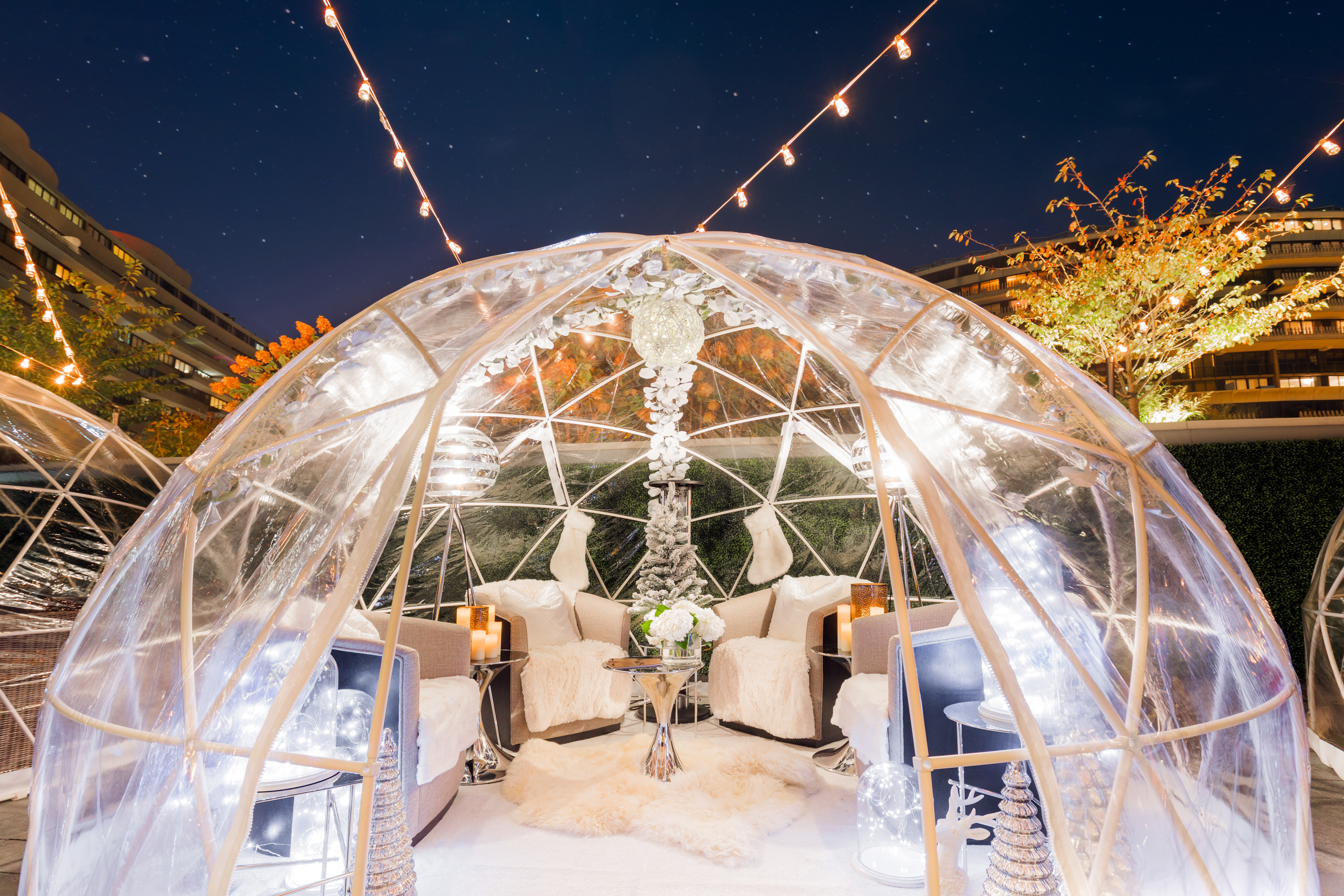 If you're looking for a slightly less active winter-themed activity, head downstairs and check out the The Next Whisky Bar's new igloo experiences. (Image: Courtesy Watergate Hotel)<p></p>