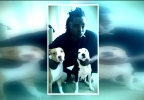 Pit bull attack suspect with dogs CNN.PNG