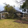 Gainesville area cleaning up after large storm knocks down tree limbs, power lines