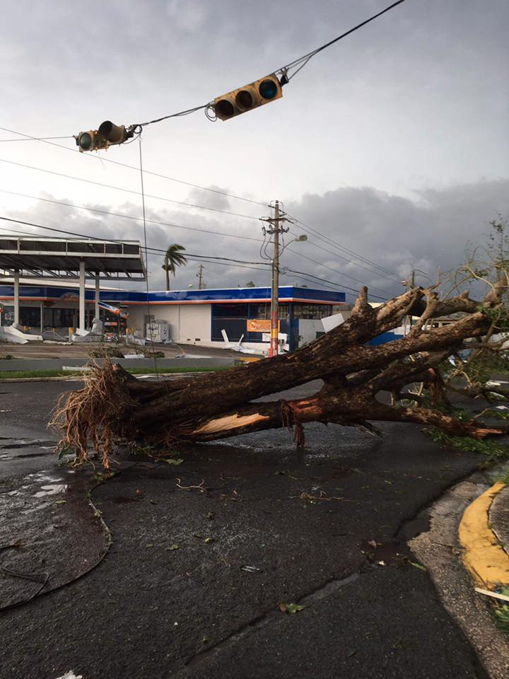 Damage in Puerto Rico (Submitted to Fox 17 News)<p></p>
