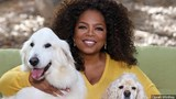 Oprah lands on list of world's 500 richest people
