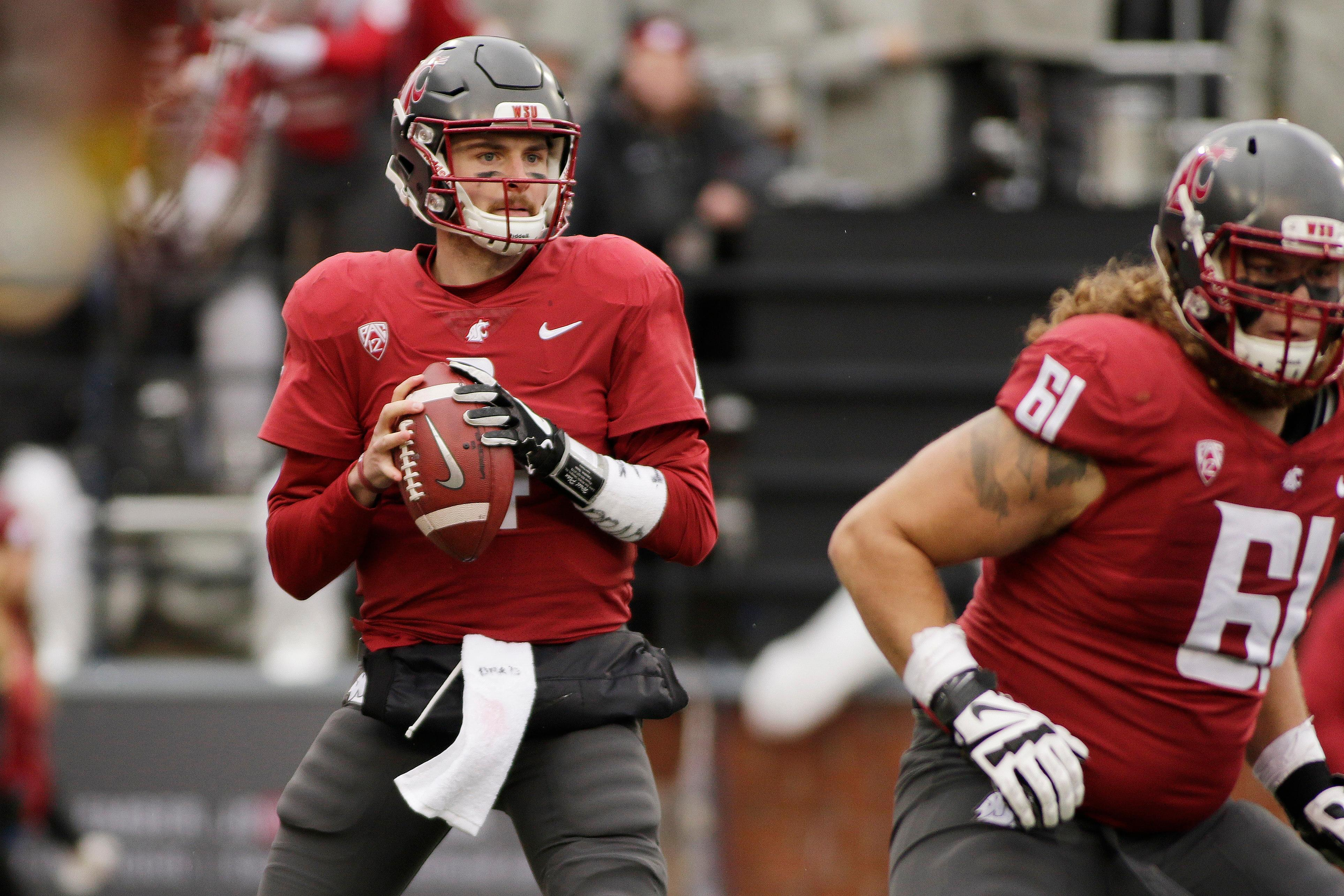 FILE - In this Saturday, Nov. 4, 2017 file photo, Washington State quarterback Luke Falk (4) looks for a receiver during the first half of an NCAA college football game against Stanford in Pullman, Wash. (AP Photo/Young Kwak, File)<p></p>