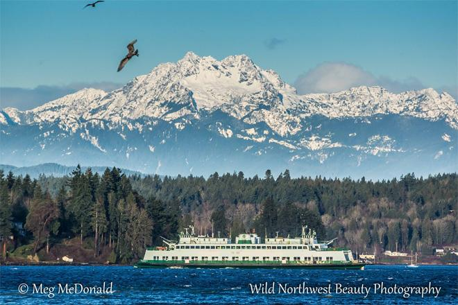 Photo: Meg McDonald, Wild Northwest Beauty Photography