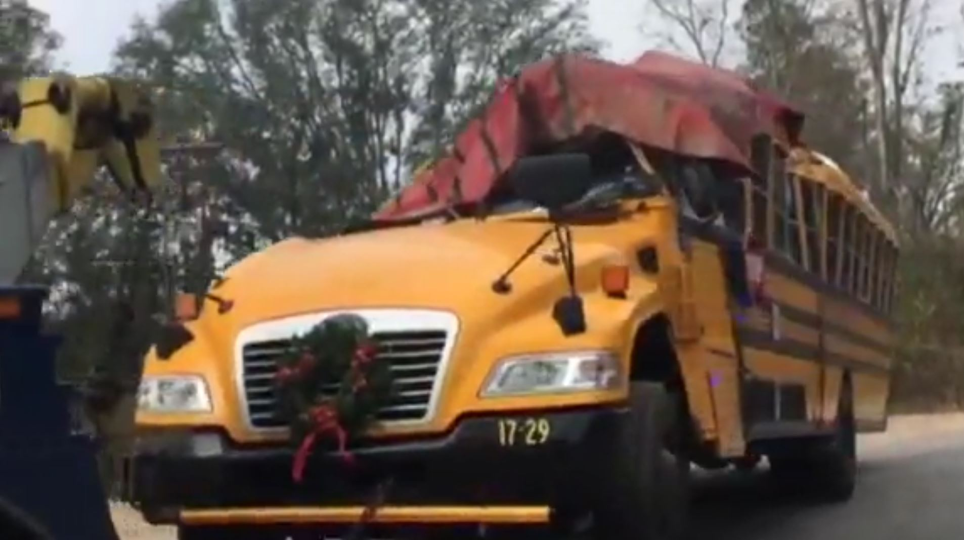 Girl, 5, dead after school bus crashes into tree in Georgia (WTOC via CNN Newsource)