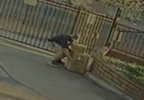 package thief.PNG