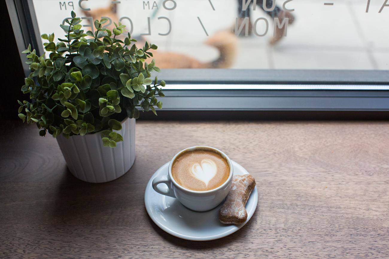 OPTION #10: If you're looking for a more laid-back place to hang on V-Day, meet up at a coffee shop like Urbana Cafe. This coffee joint is extra special because you can bring your pup and spoil them with treats made in-house. ADDRESS: 1206 Broadway Street (45202)/ Image: Sarah Parisi Dowlin // Published: 2.12.19