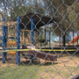 Elementary school playground fire under investigation