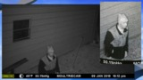 Man captured on surveillance camera in Robeson County break-in