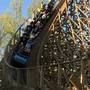 Is Kings Island's Mystic Timbers the best new ride?
