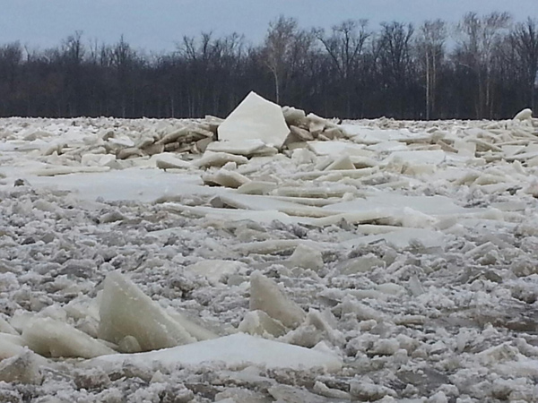 Ice jam along the Maumee River