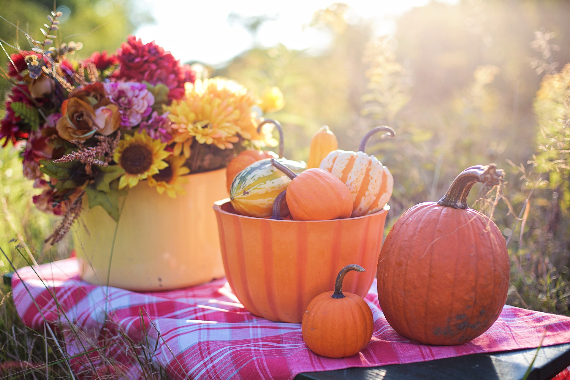 <p>Pumpkins steal the spotlight as the most picture-perfect winter squash, but they can do so much more than decorate your coffee table or wear a toothless grin on your front stoop. They deserve just as much love in the kitchen, where they're often relegated to a basic pumpkin pie that only comes out once a year. Chefs around D.C. are thinking outside the pie dish with creative recipes that feature pumpkin all season long. Instead of letting that big orange gourd rot on your porch, try whipping up one of these fall favorites. (Image: File photo)</p>