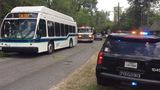 Tree hits Beaumont city bus on Calder