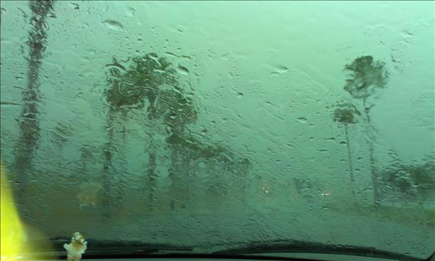 <a  href=&quot;http://share.valleycentral.com/Media/View/3382636&quot;>Palm Tree Flooding</a>
