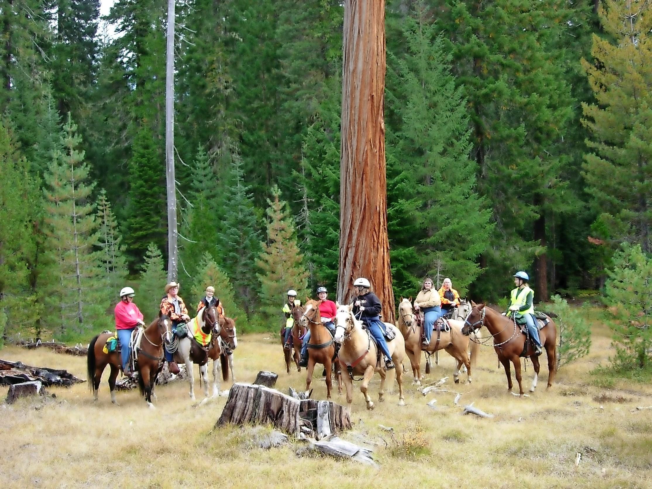 Club members stop in a meadow during a club ride along Muir Creek. - Photo by Debbie Davenport