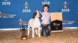 Jim Ned girl's goat sells for $100,000 at Houston Livestock Show and Rodeo