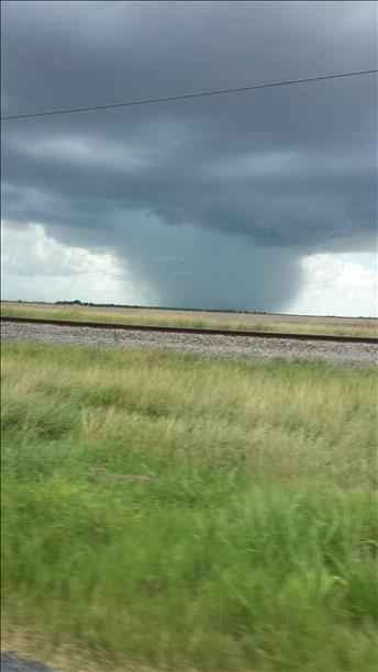 <a  href=&quot;http://share.valleycentral.com/Media/View/3717627&quot;>Lyford Rain</a>