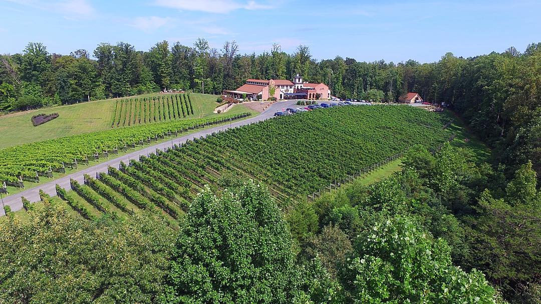 The premier tasting experience for $12 will get you a tasting of 9-12 wines.(Image: Courtesy Potomac Point Winery)