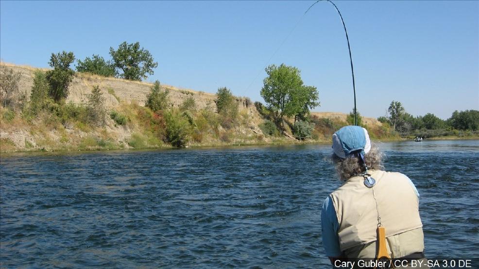 Illinois fishing tournament registration available online for Online fishing tournament