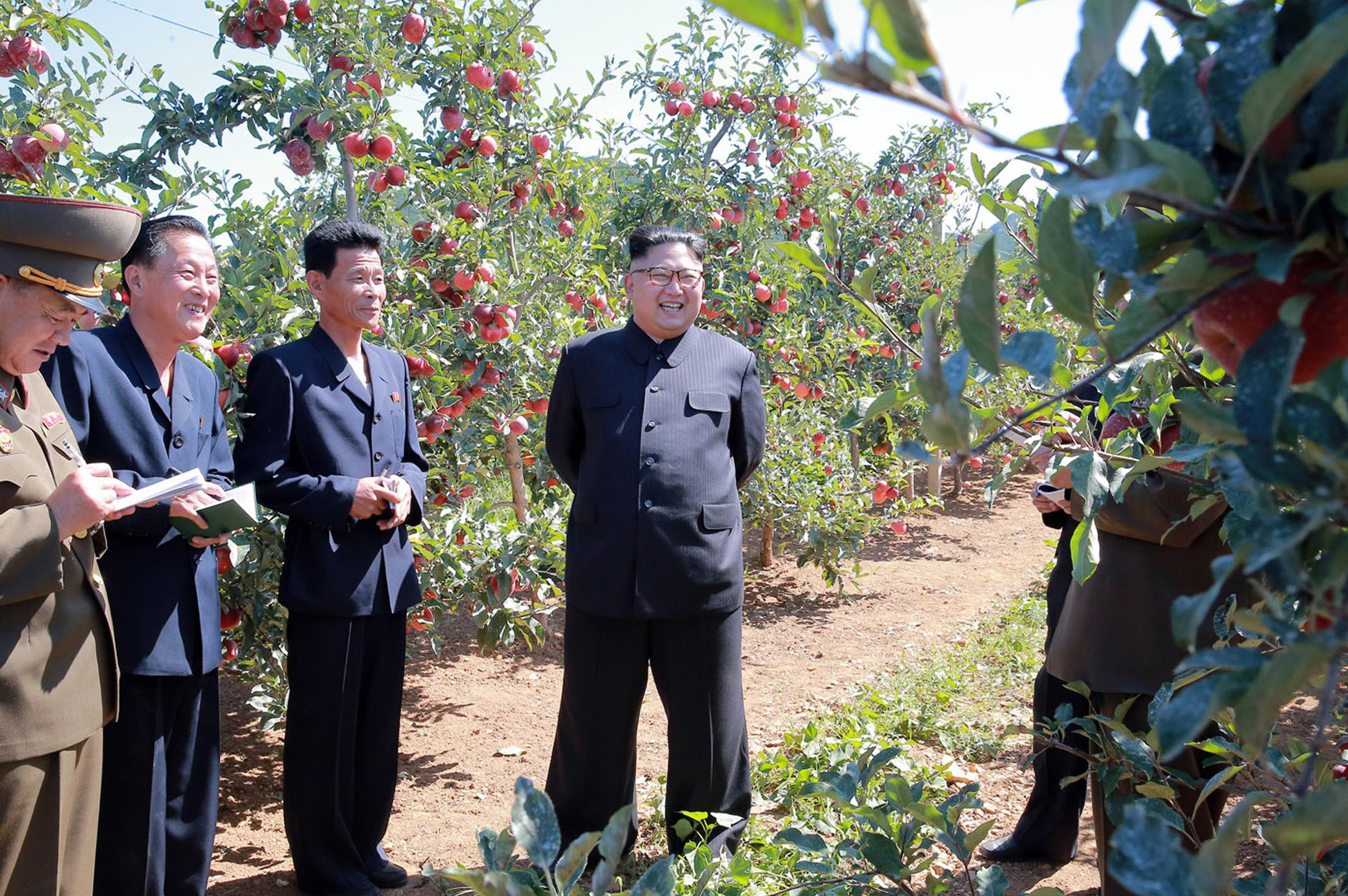 "In this undated photo distributed on Thursday, Sept. 21, 2017, by the North Korean government, North Korean leader Kim Jong Un, center, visits a fruit farm in Kwail County, South Hwanghae Province, North Korea. Kim, in an extraordinary and direct rebuke, called U.S. President Donald Trump ""deranged"" and said he will ""pay dearly"" for his threats, a possible indication of more powerful weapons tests on the horizon. Independent journalists were not given access to cover the event depicted in this image distributed by the Korean Central News Agency via Korea News Service. The content of this image is as provided and cannot be independently verified. (Korean Central News Agency/Korea News Service via AP)"