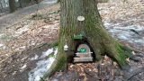 Homeless gnomes: Pennsylvania state park evicts tiny houses