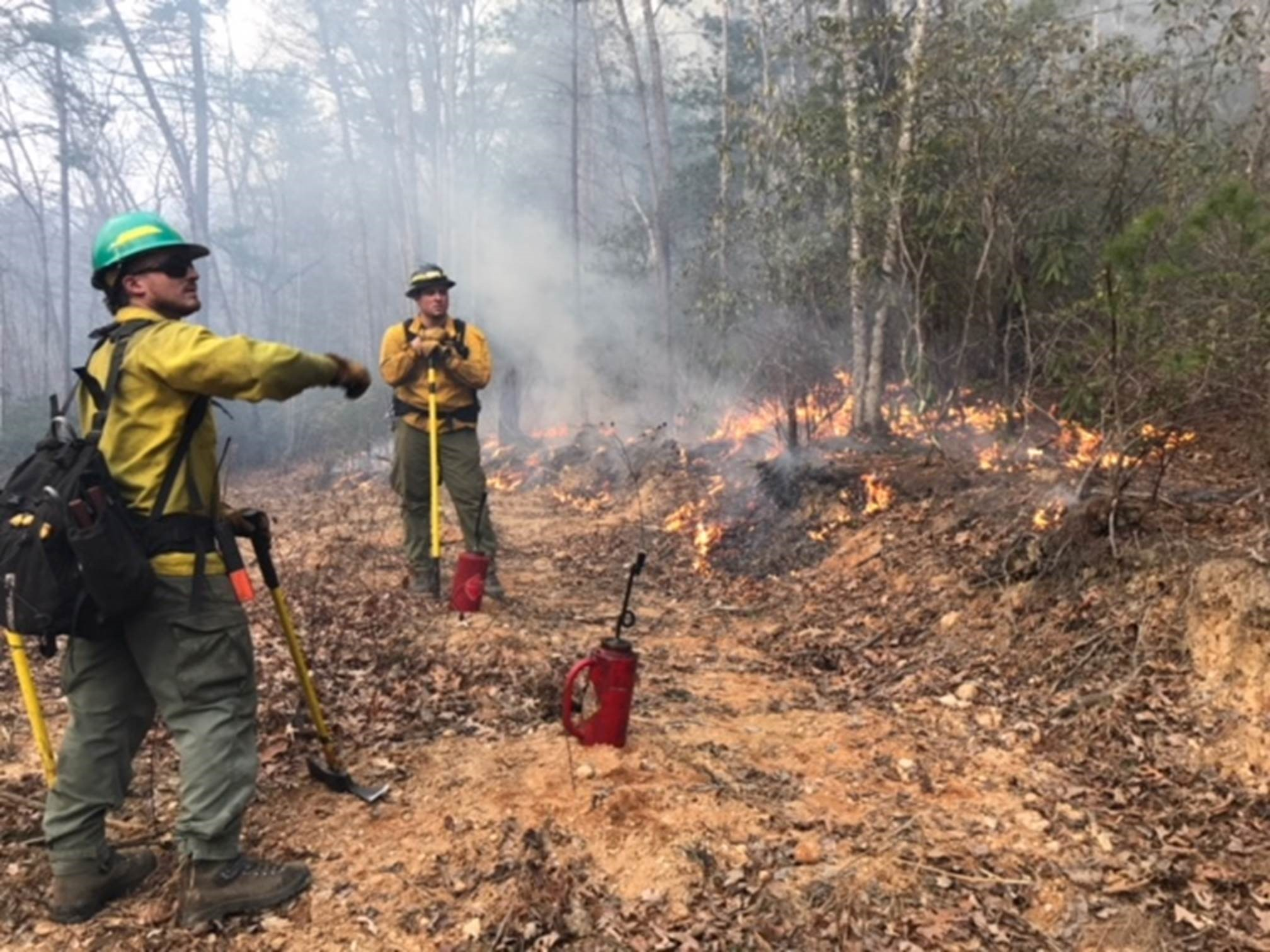 The U.S. Forest Service has already had to deal with one significant woods fire in the mountains -- Coxes Creek No. 7 Fire. (Photo credit: U.S. Forest Service)