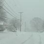 Westerly gets walloped with heavy, wet snow
