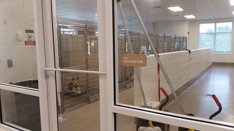Nuevo refugio de animales para abrir en el Condado de Pittsylvania   WSET - WSET 1