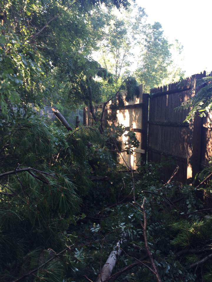 Damage to the NEW Zoo in Suamico from Aug. 14, 2015 storms. (Photo courtesy NEW Zoo)
