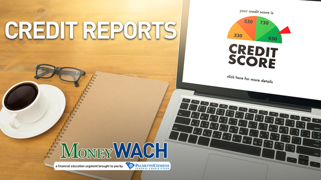 MoneyWACH- Credit Reports