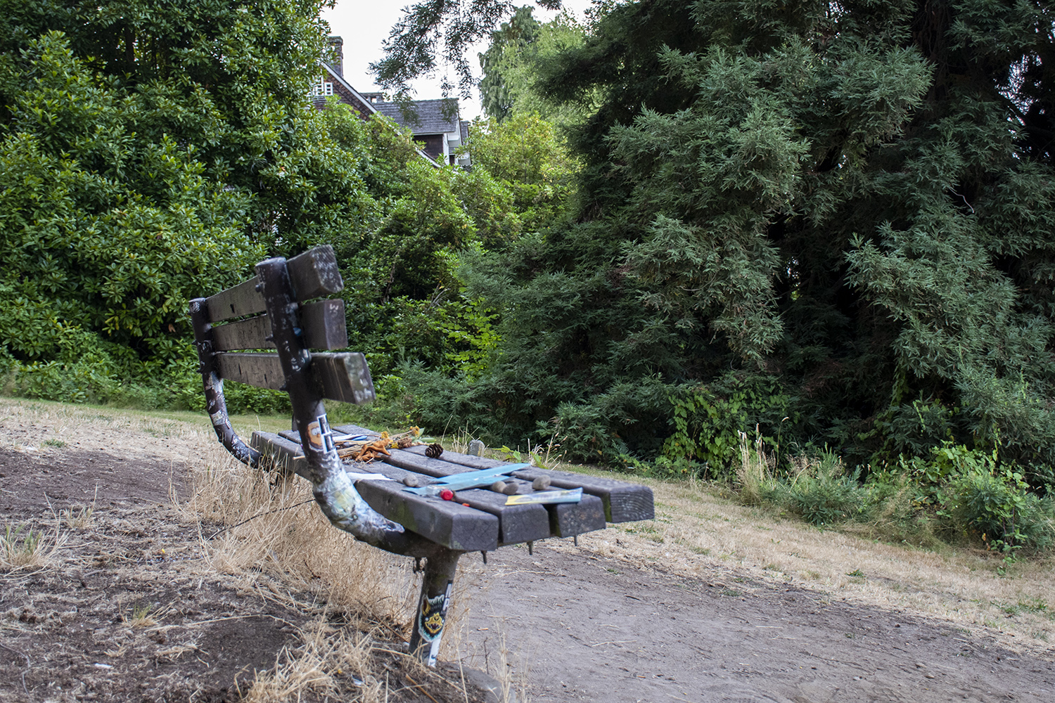 Take a stroll through Viretta Park where Nirvana frontman, Kurt Cobain, was said to frequently sit and ponder life and lyrics. Perched on a hillside that overlooks Lake Washington, the weathered bench is lined with mementos, handwritten letters and fresh flowers to this day. (Image: Rachael Jones / Seattle Refined)