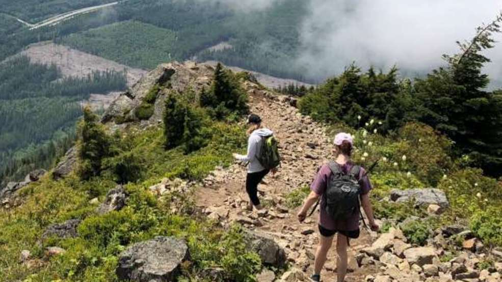 Bus service to popular trailheads starts Saturday in King Co.