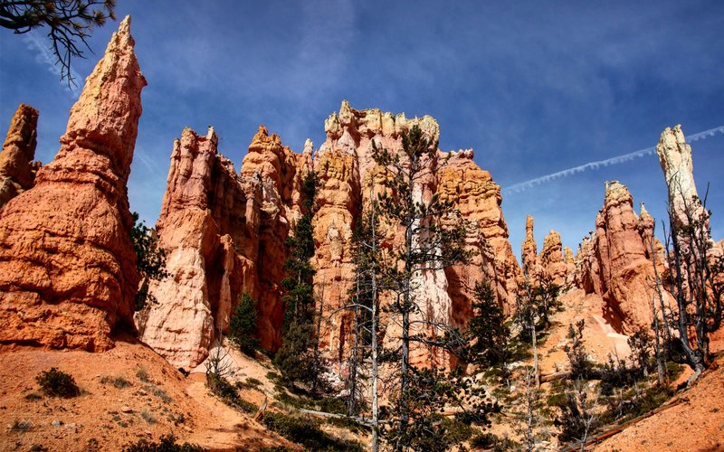 Queen's Garden — Bryce Canyon National Park, Utah{ }(Photo: Nick Paquette)