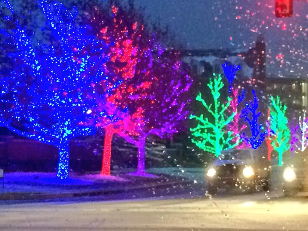 Amidst the snow, here's a look at the Christmas lights in Oklahoma City.