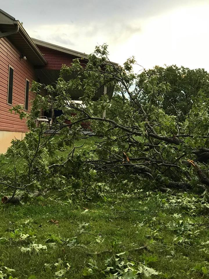 Mid-Missouri residents experienced storm damage. (Louise Oneal)
