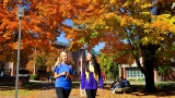 WCU professor says leaf color quality depends on temperature trends