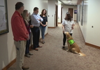 S-MISSION HEALTH THERAPY DOGS.transfer_frame_2376.jpg