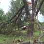 City of Broken Arrow begins tornado cleanup in neighborhoods