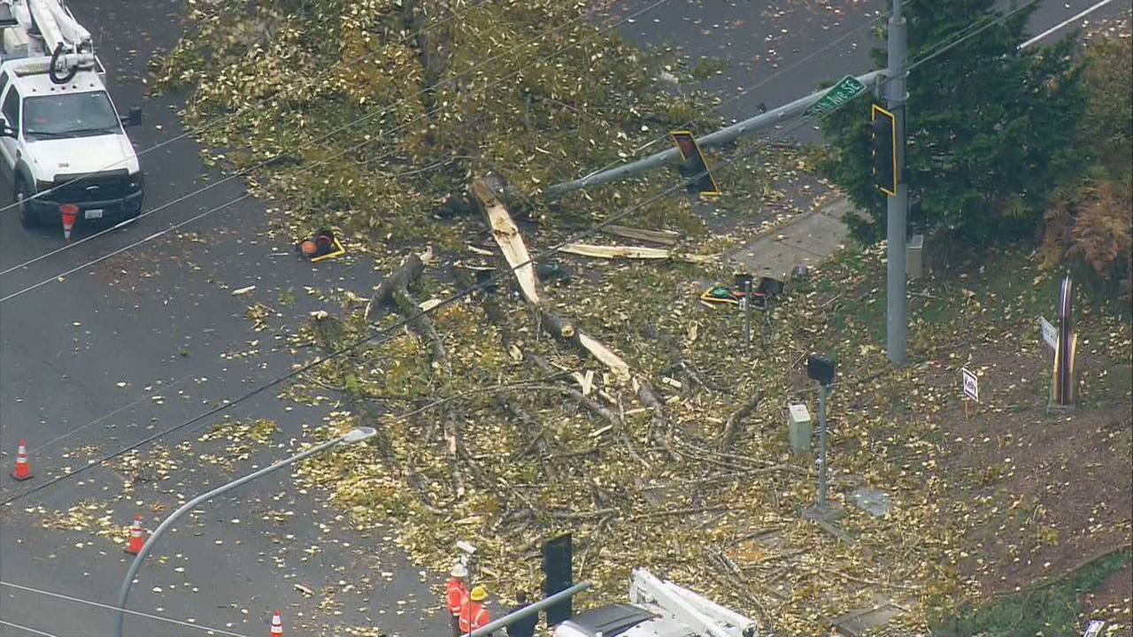 Crews worked on a downed tree in Mill Creek at Seattle Hill Road and 35th Avenue Southeast. (Photo: KOMO Air4)<p></p>
