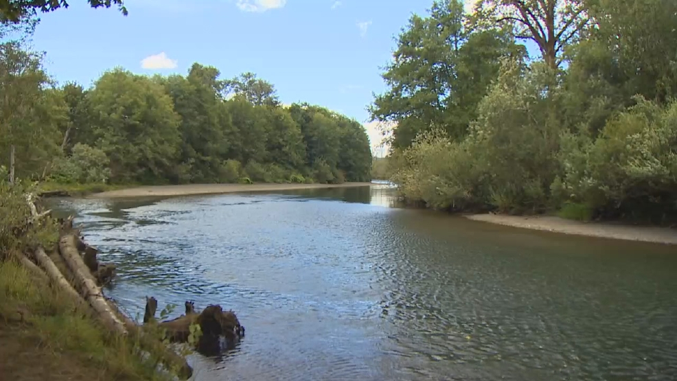 Fishermen upset about new rules on the skokomish river komo for Snohomish river fishing report