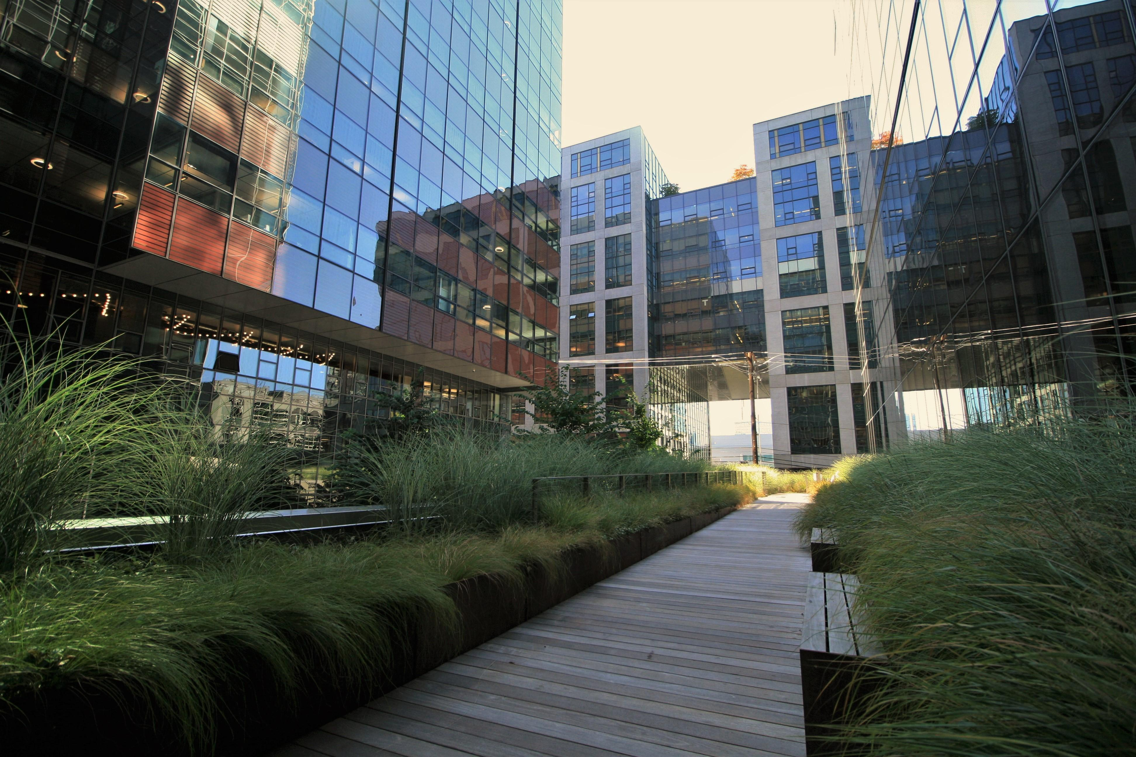 Tucked into a gentle slope between two office towers in South Lake Union you'll find an extended walkway with benches, tables and cheerful greenery. (Image: Elizabeth Blanton / Seattle Refined)