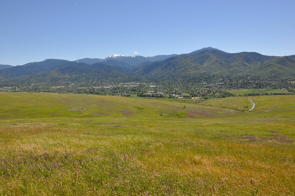 Photo courtesy of Pepper Trail<br>Wildflowers bloom in the spring on the Imperatrice property across from Ashland.