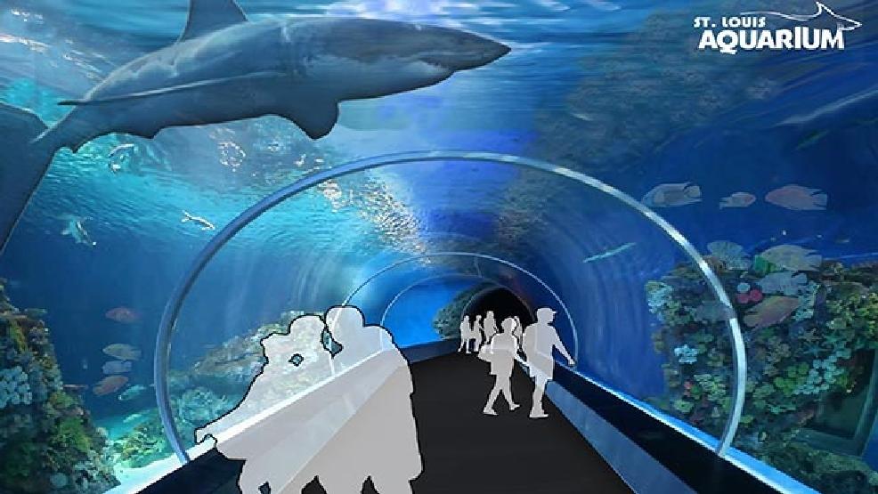 St Louis Union Station Planning 45 Million Aquarium Krcg