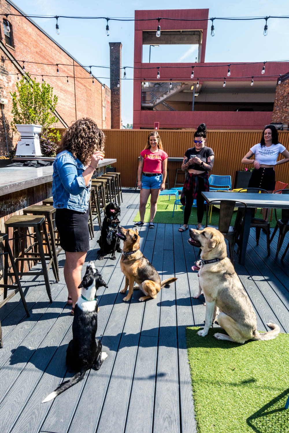 PLACE: Pins Mechanical Company / ADDRESS: 1124 Main Street (Over-the-Rhine) / Introduce your pup to duckpin bowling and a colorful rooftop patio at Pins. The OTR spot is also home to pinball machines, bocce ball, and all sorts of games to make for an amusing outing.{ }/ Image: Catherine Viox // Published: 10.14.19